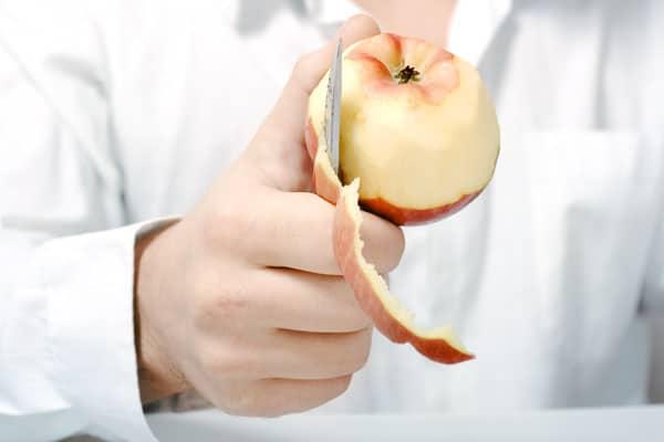 I muscoli gradiscono la buccia della mela e i pomodori verdi.